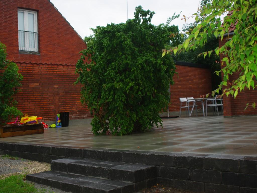 Træet og terrassen